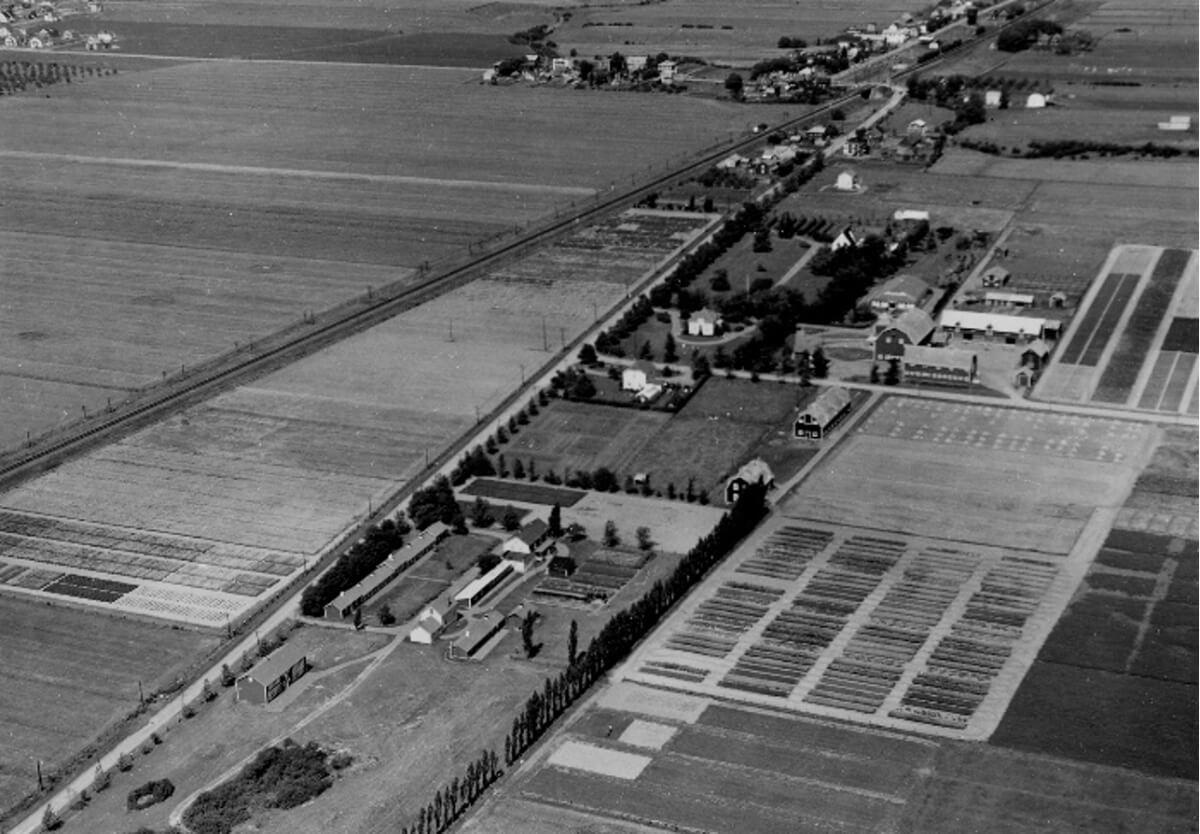 Ferme expérimentale fédérale  Photo: Archives de la Côte-du-Sud