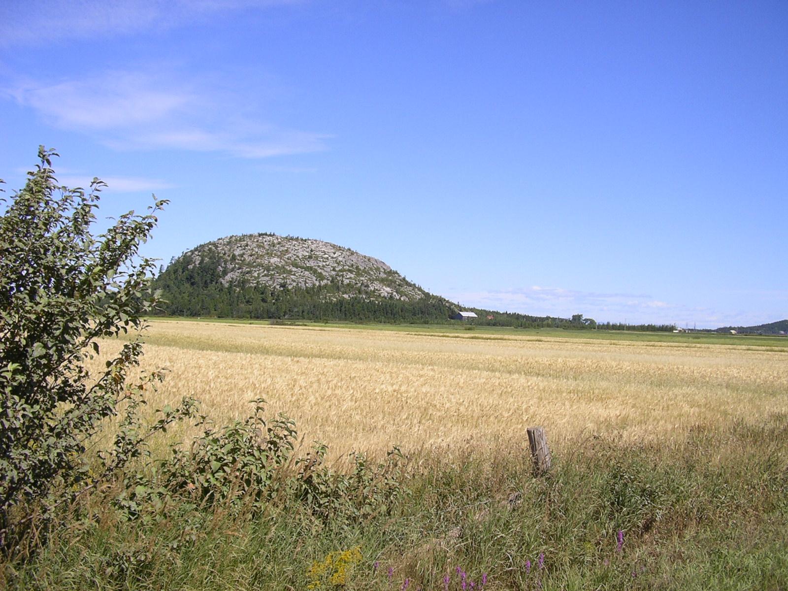 """Image mise en avant pour """"Fêtes du 175e_Prochaine activité: Paysages géologiques du Kamouraska"""""""